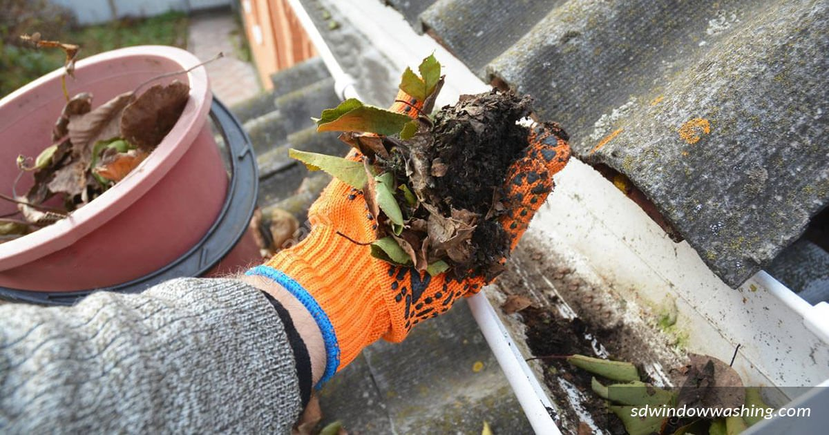Rain Gutter Cleaning Services San Diego